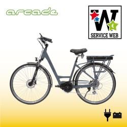 Vélo GREEN BIKE TOUR Arcade
